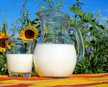 Milkampo-Alianzas.jpg